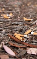 Ignoring your smokers Cigarette Butt Litter is like telling the planet to get stuffed