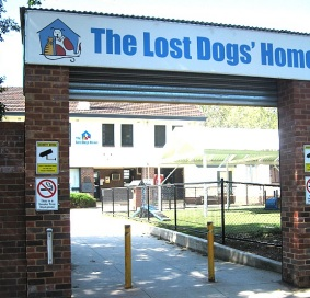 Lost Dogs Home - Eco-Pole Wall-mounted Ashtray